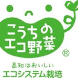 【PR】高知のエコな野菜を食べつくす!高知野菜レシピコンテスト