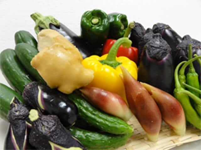 高知野菜詰め合わせ