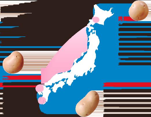 日本の北から南へリレー出荷でいつでもおいしいじゃがいもがお届けできます。