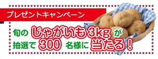 プレゼントキャンペーン 旬のじゃがいも3kgが抽選で300名様に当たる!