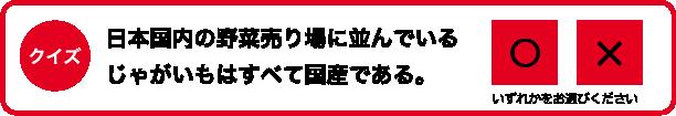 クイズ 日本国内の野菜売り場に並んでいるじゃがいもはすべて国産である。