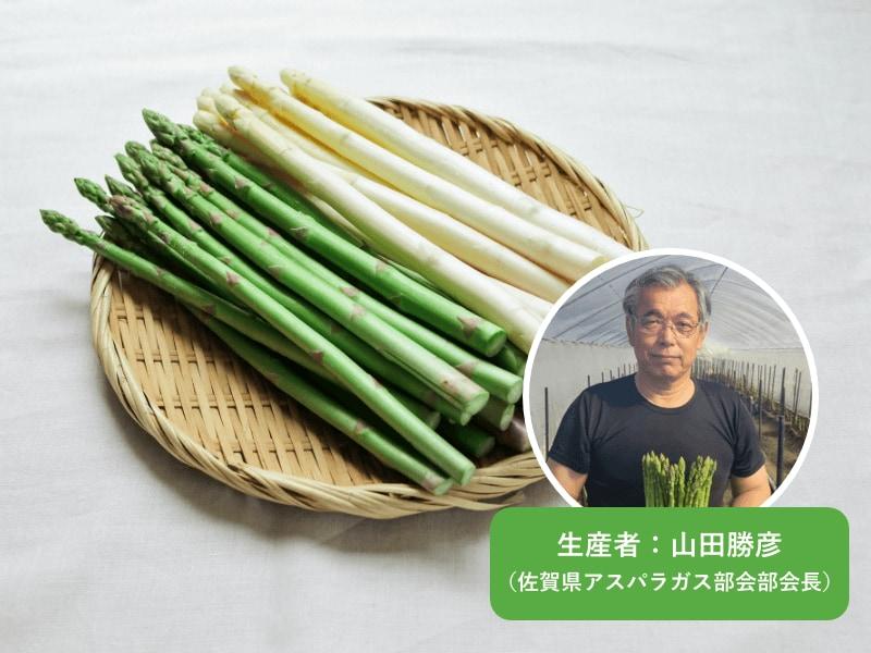 佐賀県産のアスパラガスは生産者の愛情たっぷり