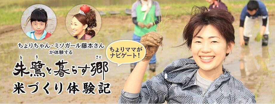 「朱鷺と暮らす郷」米づくり体験記 - ちょりママがナビゲート!ちょりちゃん・ミソガール藤本さんが体験!