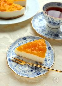 『夏におすすめ!甘酒のマンゴーレアチーズケーキ』