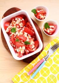 『【ヨーロッパのおそうざい】 作り置き用・トマトサラダ』