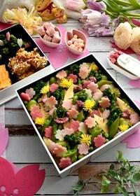 『春がいっぱい詰まった春野菜のおこわ弁当』