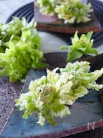 【春の香り】花開くふきのとうの天ぷら