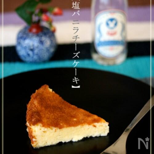 【塩バニラチーズケーキ】〜塩フェチ好み〜