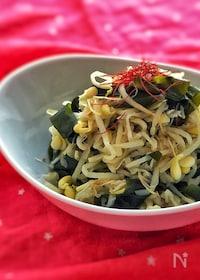 『作り置き♡常備菜♡切り干し大根とワカメと豆もやしのナムル♡』