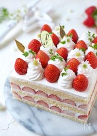 『苺のスクエアケーキ』