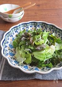 『包丁要らず♪レタスとしらすの簡単サラダ』