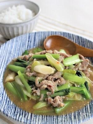 豚肉とチンゲン菜炒め、マーボー風味
