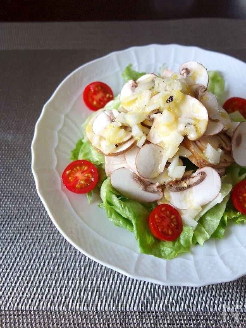 白い皿に盛られたマッシュルームの塩レモンサラダ