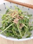 豆苗とツナの簡単サラダ