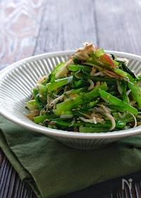 『*小松菜としらすの香味野菜のナムル風*』