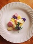 カラフルジャガ芋の米粉ニョッキ