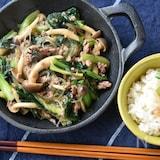フライパン一つで簡単!小松菜と春雨の麻婆炒め