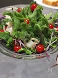 ソルトリーフ、はなびらたけ、ラディシュスプラウトのサラダ