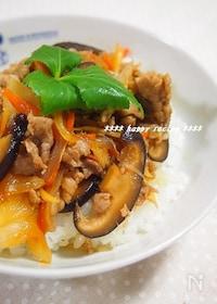 『疲労回復✿豚肉と玉ねぎのさっぱり生姜焼き丼』