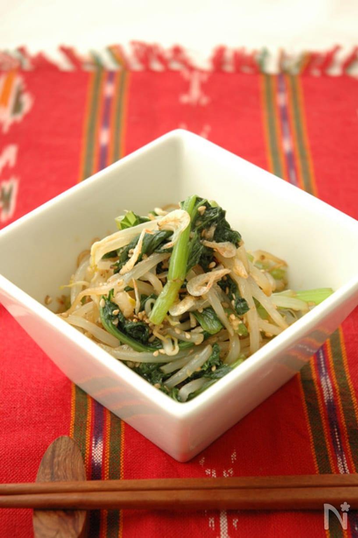小松菜ともやしのニンニク生姜香味ナムル