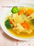 圧力鍋で時短!手羽元と野菜の優しい和風スープカレー