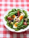 たっぷり春野菜のニース風サラダ