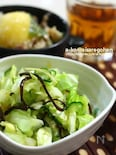 「春キャベツと昆布の甘酢サラダ」