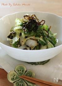 『白菜モリモリ食べられる!シャキシャキ白菜サラダ』