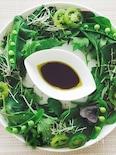 【ワントーン】グリーンリースサラダ
