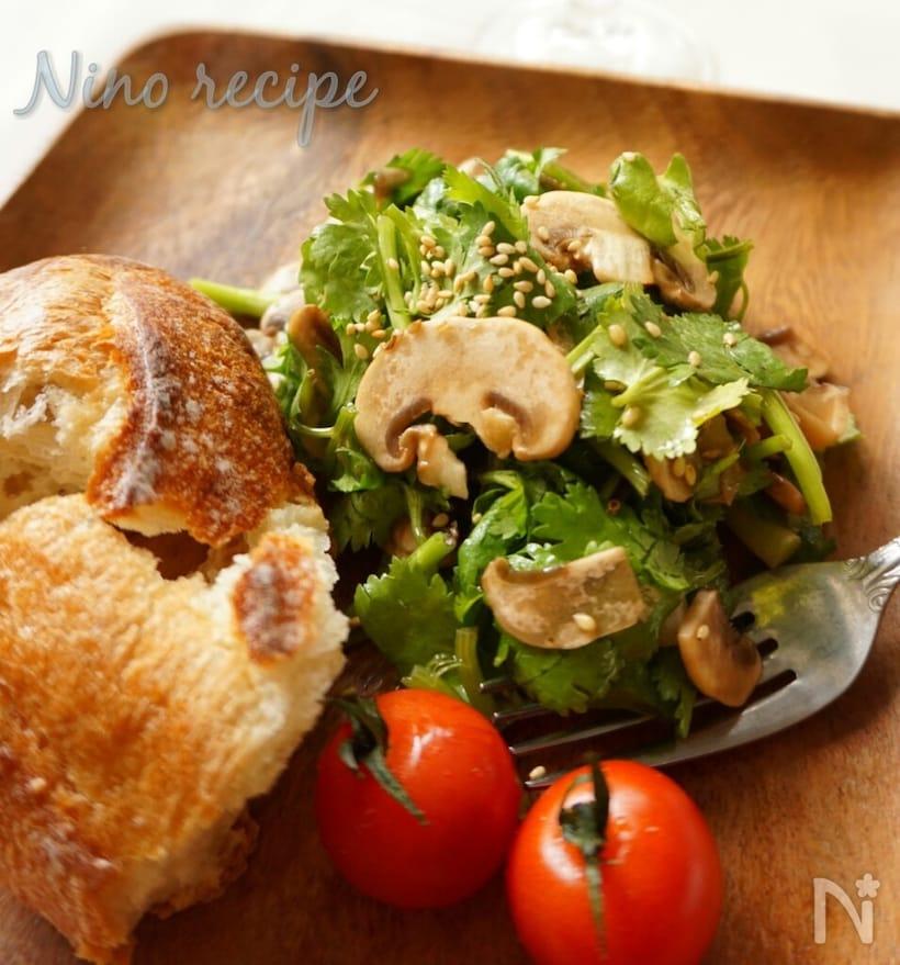木のトレーにパン、トマトと盛られたパクチーとホワイトマッシュルームのサラダ