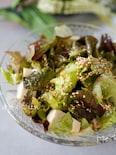 沢山食べれちゃう♪『サニーレタスと豆腐のチョレギサラダ♪』