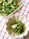 【5分】おつまみ・お弁当・副菜に「豆苗ときゅうりのツナ和え」