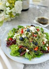 『ブルーベリーとトマトのスプラウトサラダ』