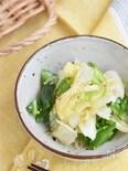春キャベツのやみつき塩だれサラダ【作り置き】