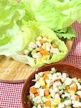 エスニック味de彩り野菜と鶏肉のレタス包み