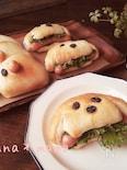レンジ発酵で♪ホットドックとぞうさんパン♪