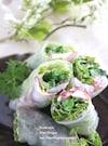 タコと菜の花の梅マヨ生春巻き