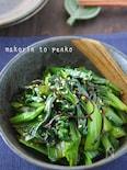 5分で完成!レンジで簡単*小松菜の塩昆布ナムル