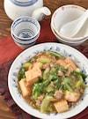 チンゲン菜と厚揚げ豆腐のそぼろあん