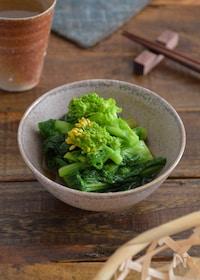 『菜の花のおひたし。春らしい和風の副菜。作り置きにも。』
