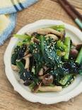 おいしすぎ。小松菜としめじの海苔ナムル【作り置き・簡単】