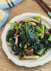 『おいしすぎ。小松菜としめじの海苔ナムル【作り置き・簡単】』