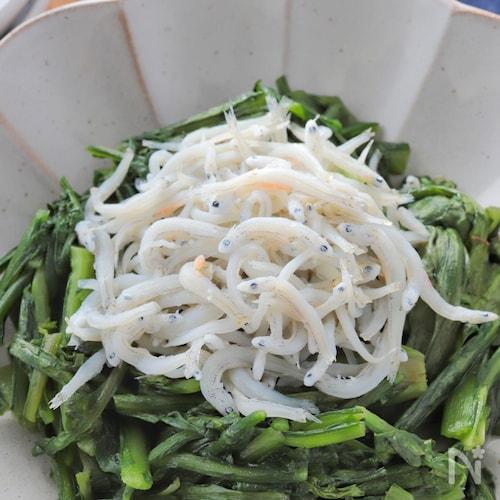 超シンプルなのに美味!春菊の塩炒めしらす乗っけ【おつまみに】