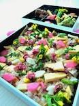 春野菜たっぷり桜おこわででお花見弁当