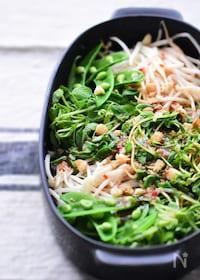 『【3分】何これ美味しい!病みつき♪豆苗とナッツのタイ風サラダ』
