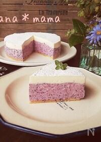 『ミキサーで1発♪ブルーベリーレアチーズケーキ♪』