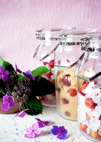 『【梅仕事】ミスなでしこ♡ピンク色の梅で梅シロップ実験♪』
