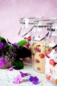 【梅仕事】ミスなでしこ♡ピンク色の梅で梅シロップ実験♪