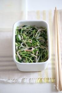 豆苗ともやしのナムルサラダ。