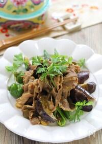 『ラム肉と夏野菜のエスニック炒め』